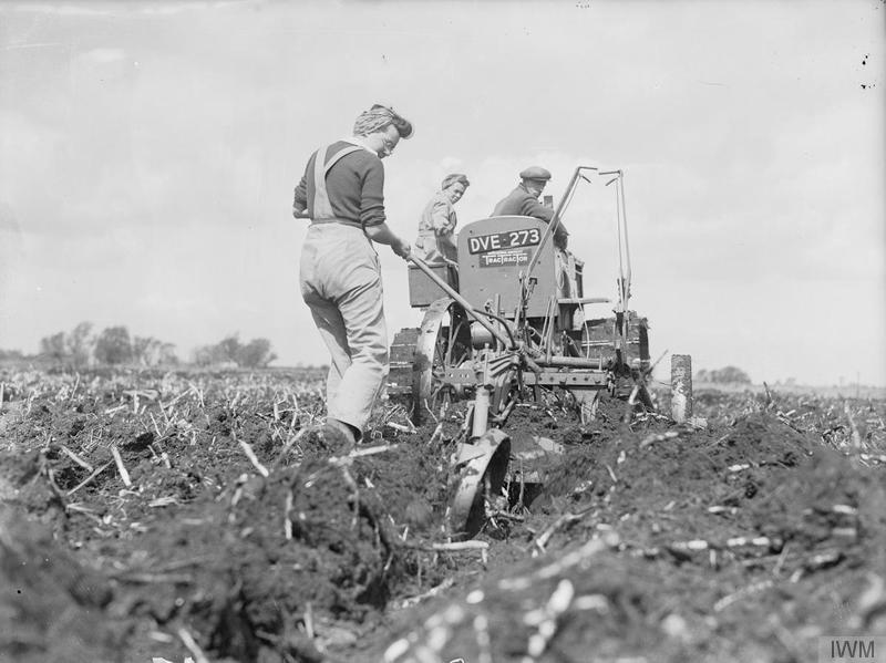 Members of the WLA help a farmer to plough reclaimed fenland in Cambridgeshire. The deep digger plough and International tractor being used are ploughing 15 inches deep. Source: IWM D 8455