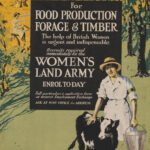 WW1 Recruitment Poster: Recruits required immediately for the Women's Land Army