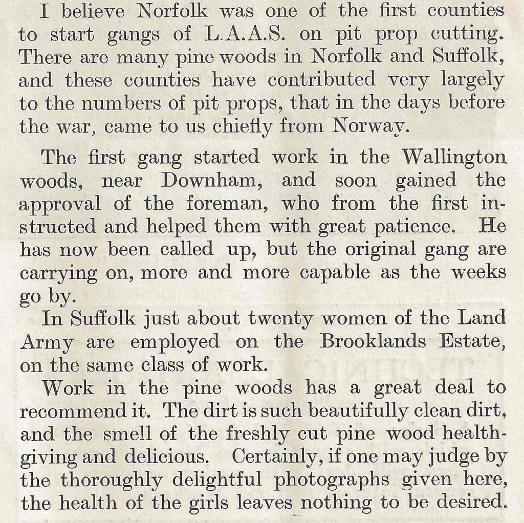 Accompanying text on the Timber Corps in Norfolk. Source: Cropped article from The Landswoman, February 1918, p25