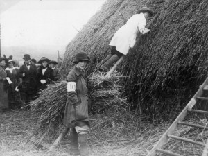 Members of the Women's Land Army thatch a haystack in 1914. Source: IWM Q 54604.