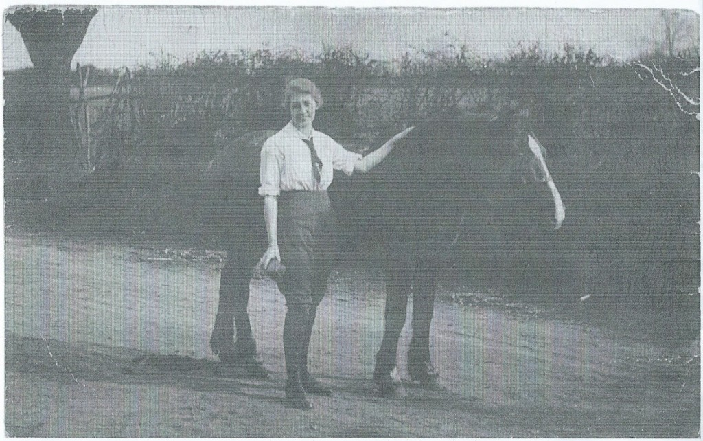 Land girl Dorothy Brown, The Grange, Gunthorpe, Peterborough c1916 grooming horse