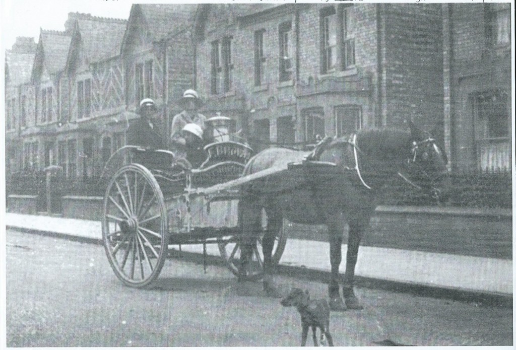 Two land girls deliver milk in horse-drawn cart for Frederick Brown, Gunthorpe, Peterborough c1917