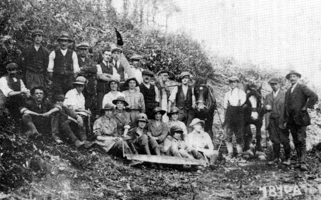 Women's Land Army Photo, near Machynlleth, c.1917