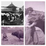 November Activity of the Month: Tending Livestock