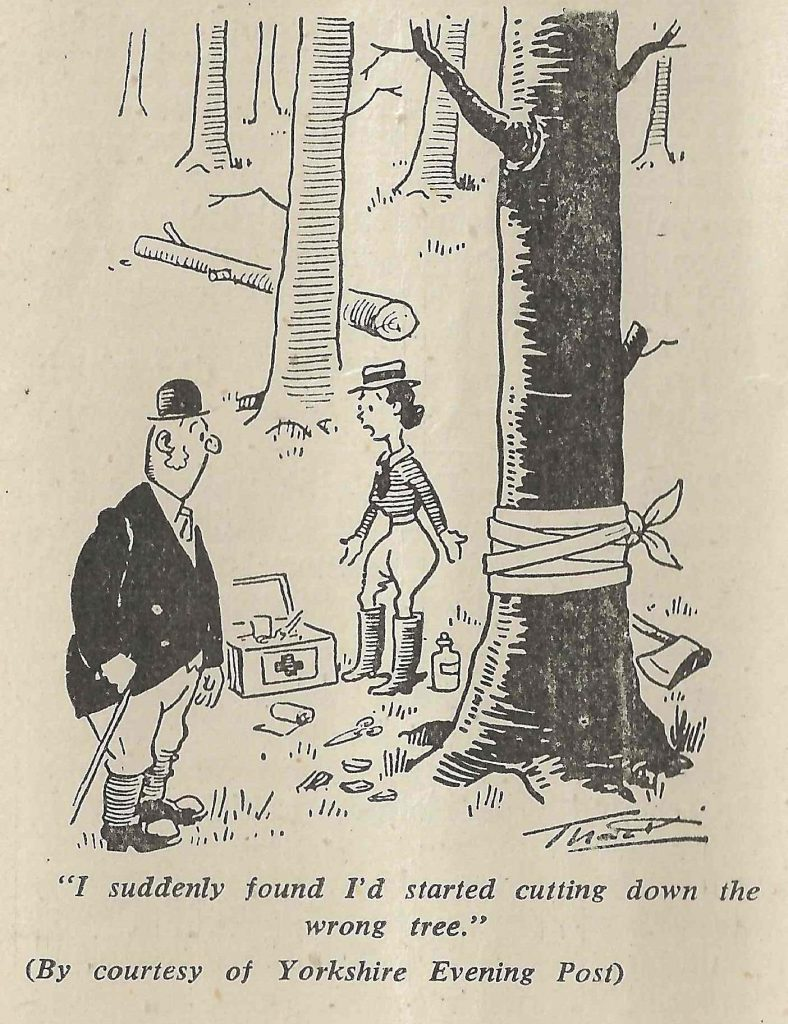 'I suddenly found I'd started cutting down the wrong tree'. By courtesy of Yorkshire Evening Post.