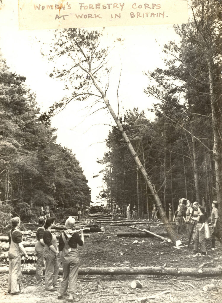 Women's Forestry Corps
