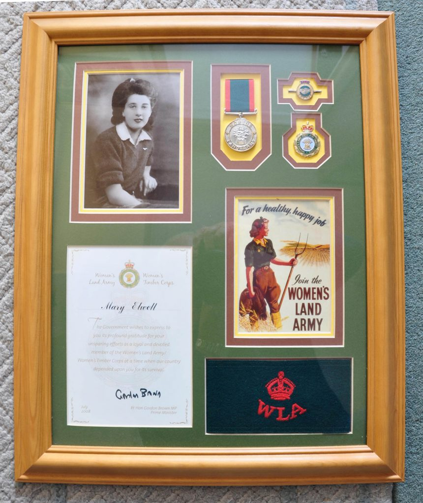 Mary Elwell Display of WLA items