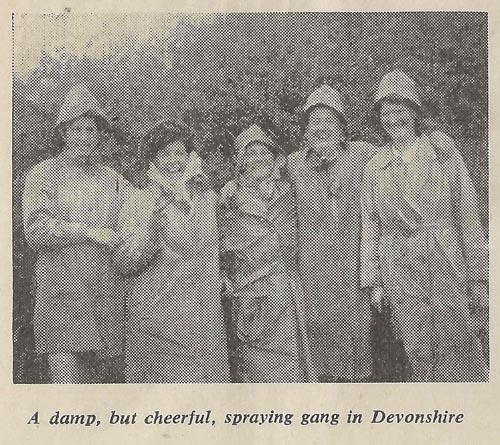 Damp, but cheerful, spraying gang in Devonshire