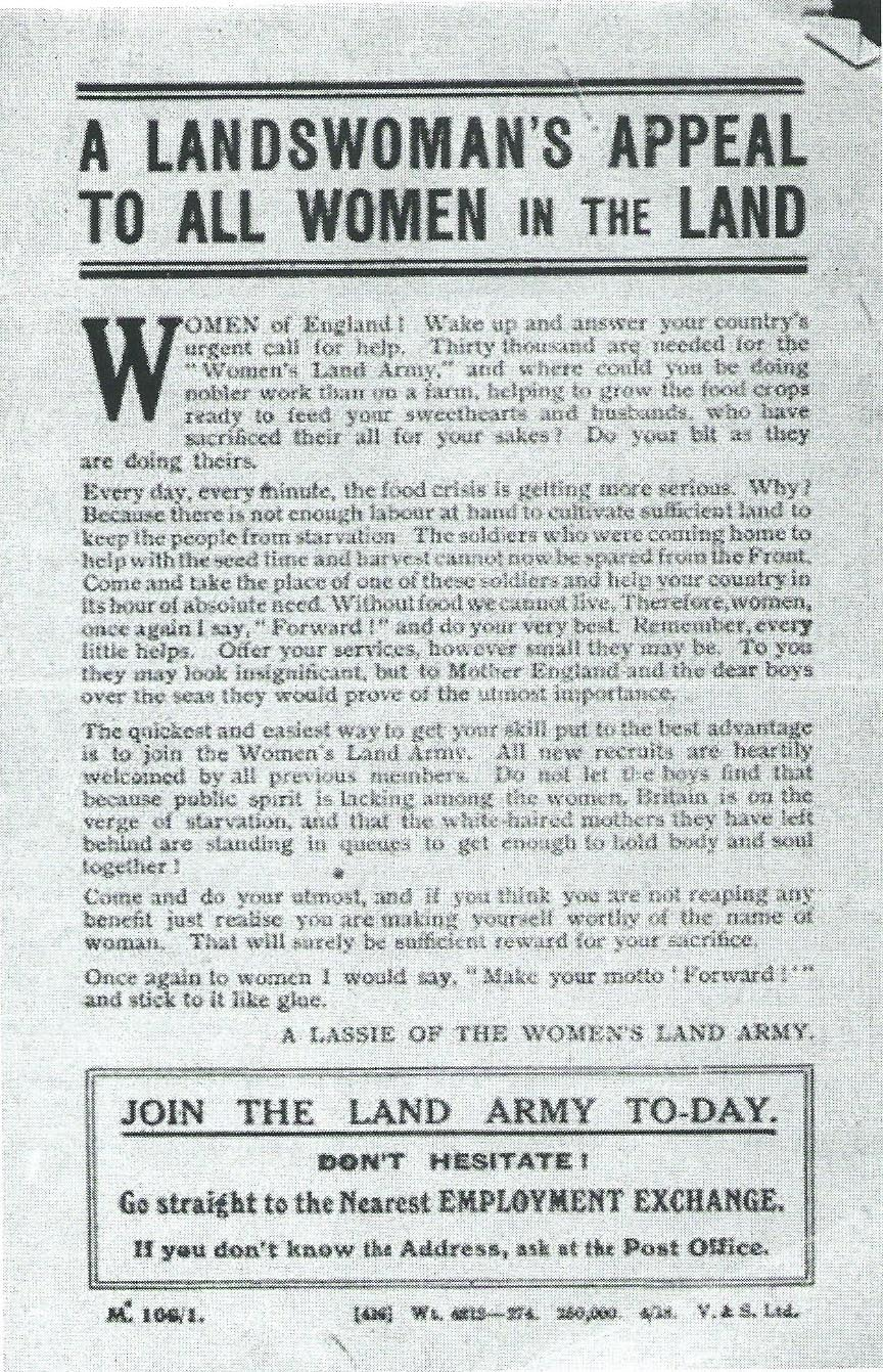 WLA WW1 1917 poster 'A Landswoman's Appeal To all Women In The Land'