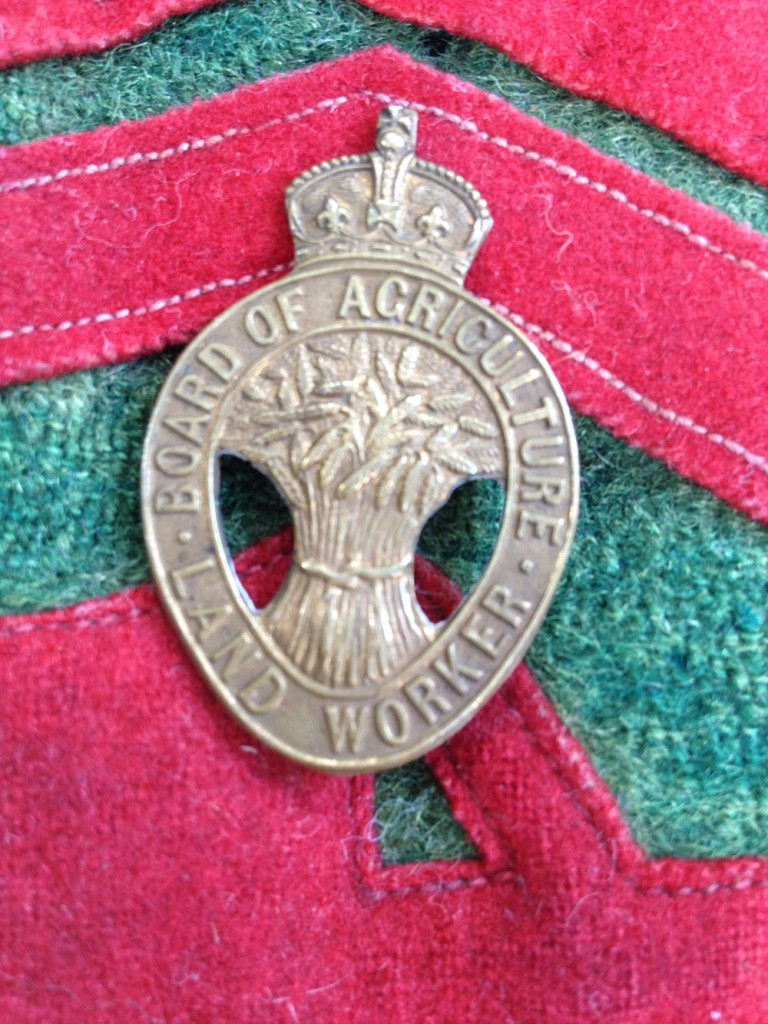 Board of Agriculture Land Worker Badge