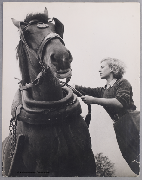 19 year old Iris Joyce now handles horses with the same ease that she once handled typewriters Source: Northamptonshire Record Office. Courtesy of Dr David Wilson.