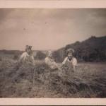 Jessie, Rita & Joan Birchall