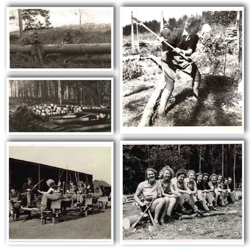 Women's TImber Corps