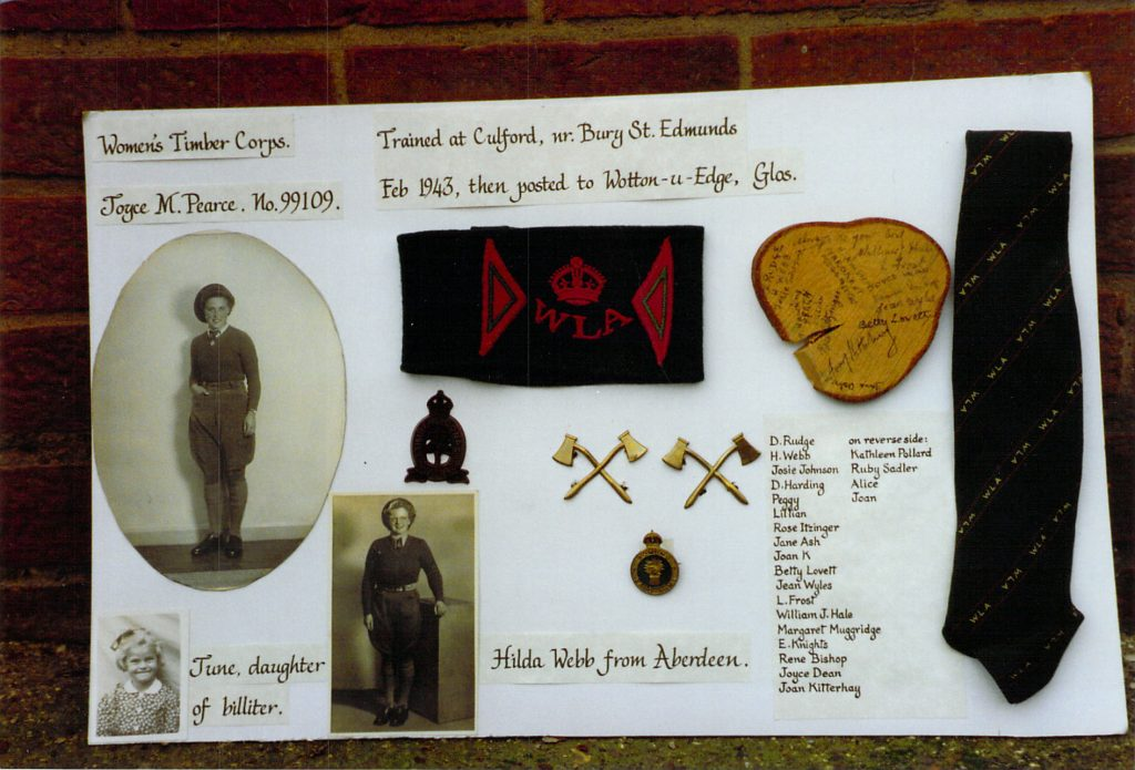 A selection of items from Joy's time in the Women's Timber Corps.