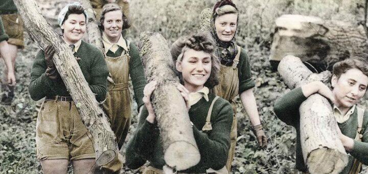 Lumberjills