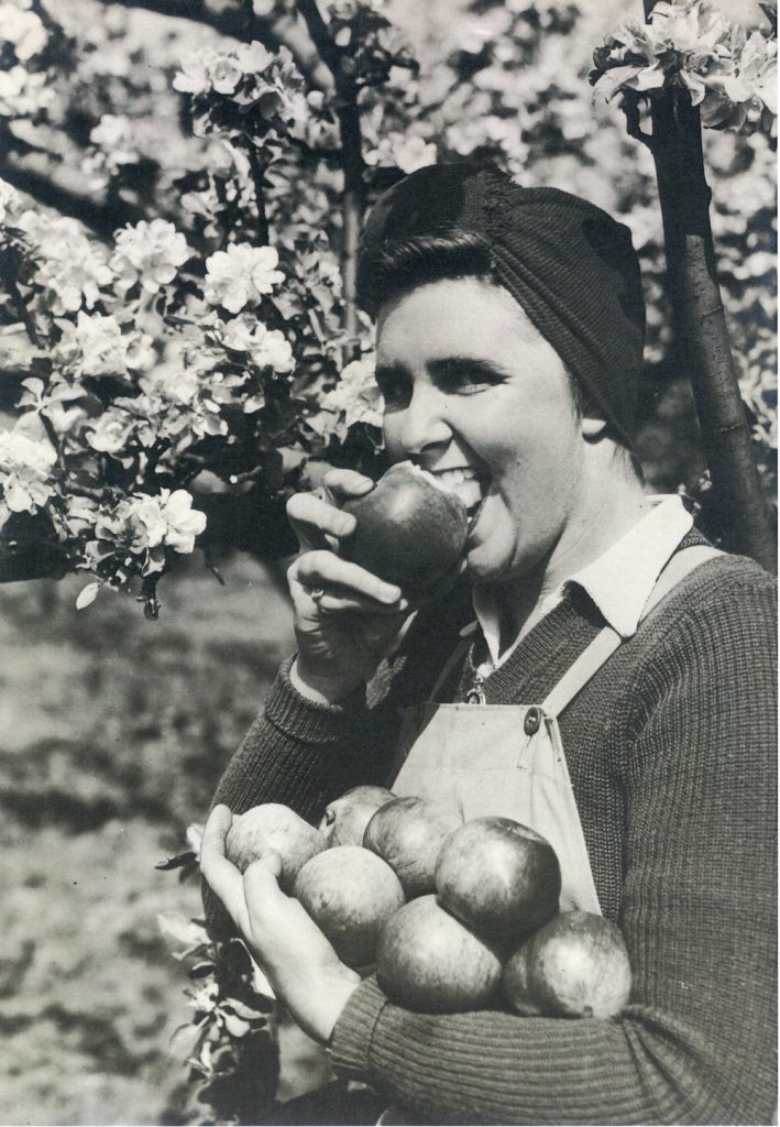 Photo of Katharine eating an apple published in the weekly magazine The Illustrated in 1942.