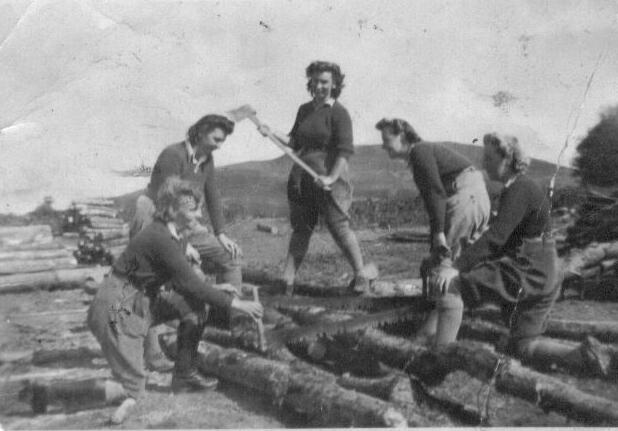 Lumber Jills at Vaynol Estate