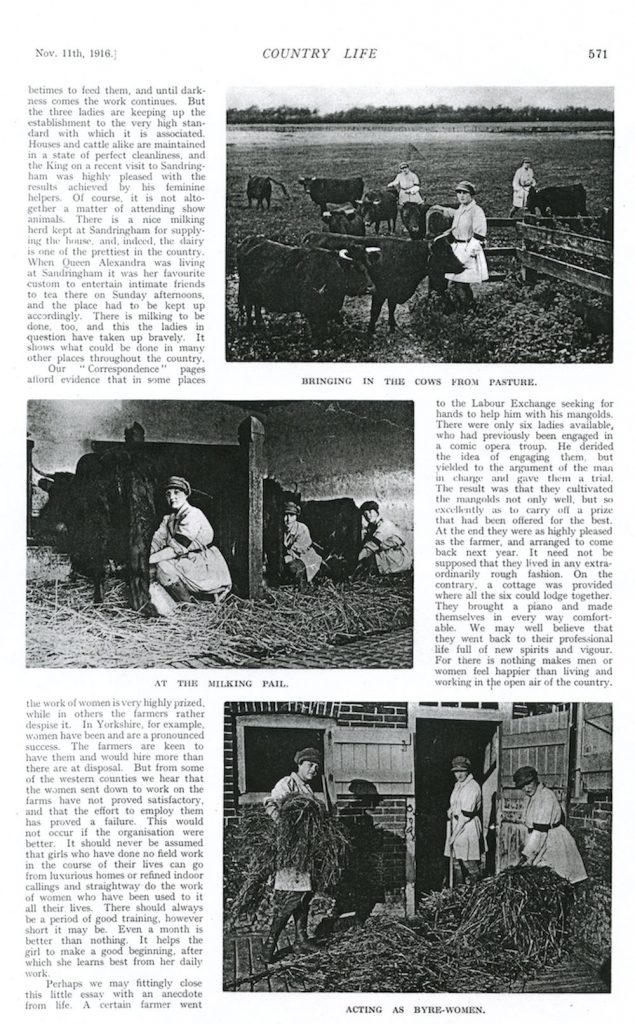 Feature on Sandringham Land Girls in Country Life on 11th January 1916 2