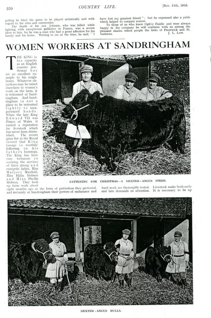 Feature on Sandringham Land Girls in Country Life on 11th January 1916