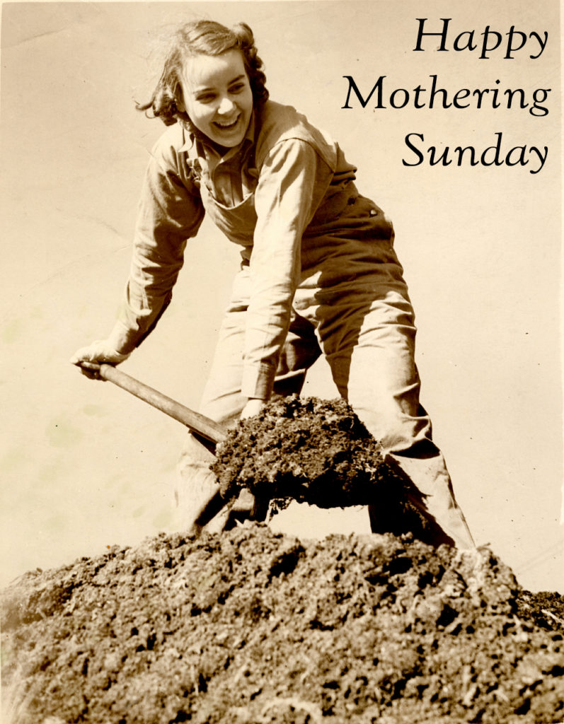 A photograph of a Land Girl digging